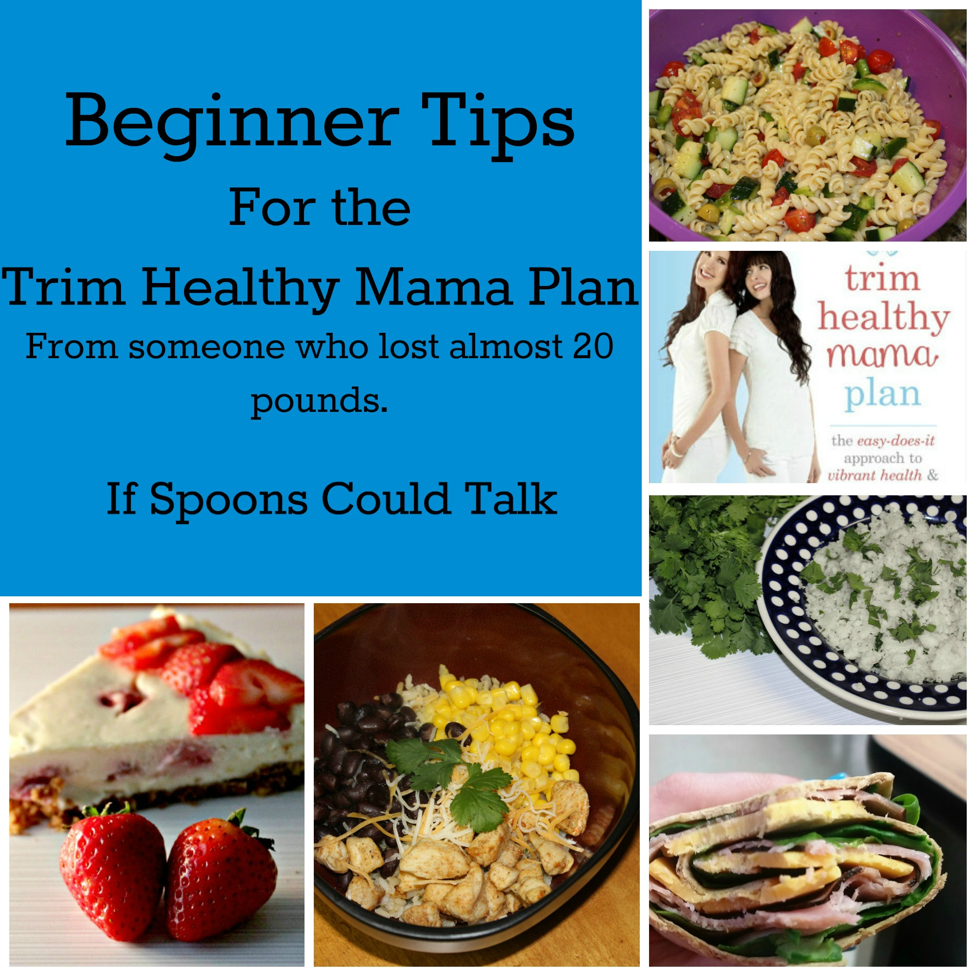 There Are Multiple Tips For Beginning The Trim Healthy Mama Plan Out But Everyone Is Different And What Works One Person May Not Work Another